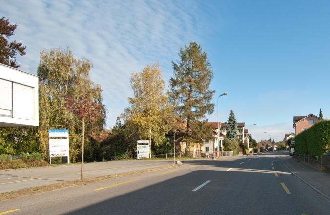 Romanshornerstrasse West-Ost_DSC0044_2